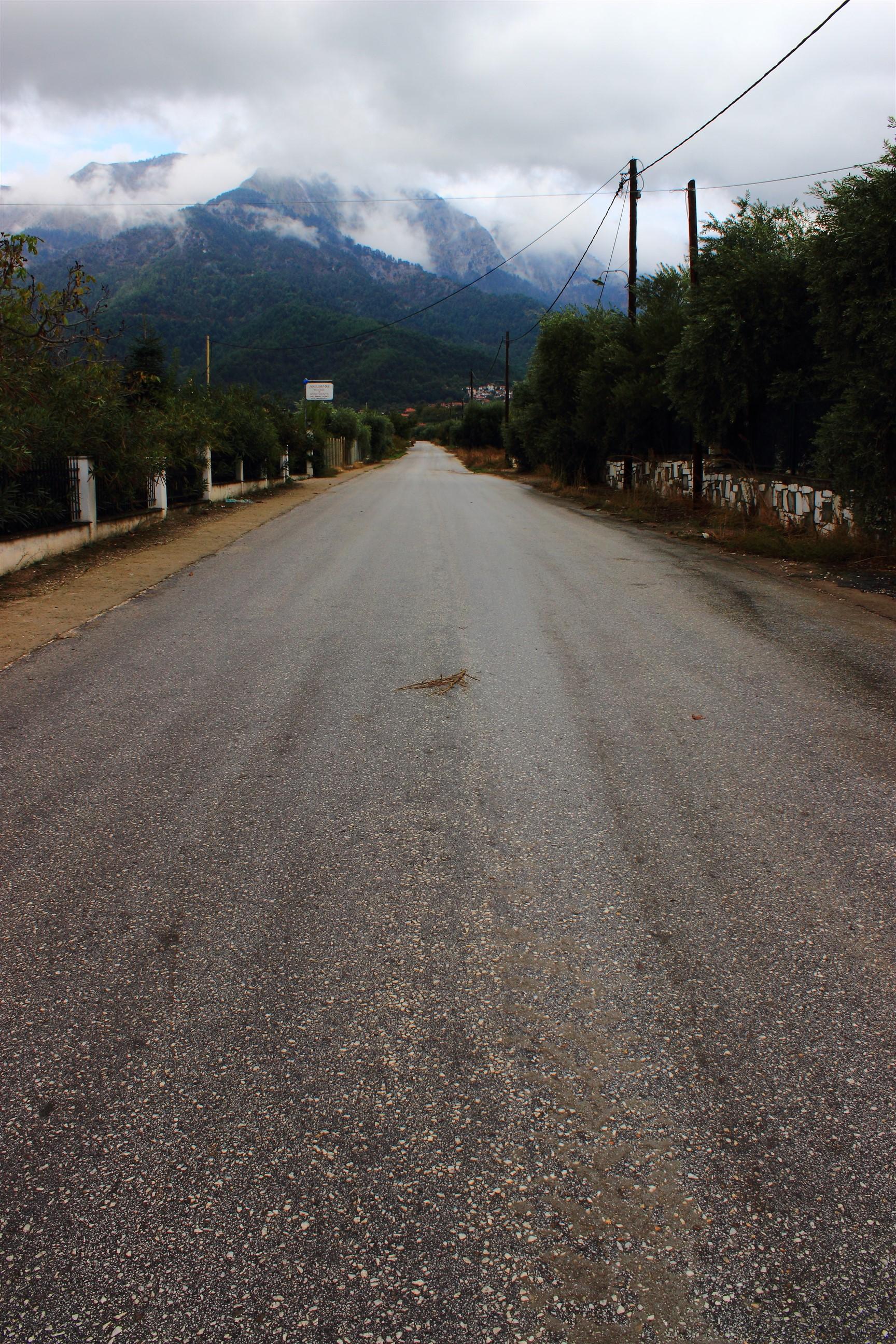 Droga przez gaje oliwne w stronę Potamii