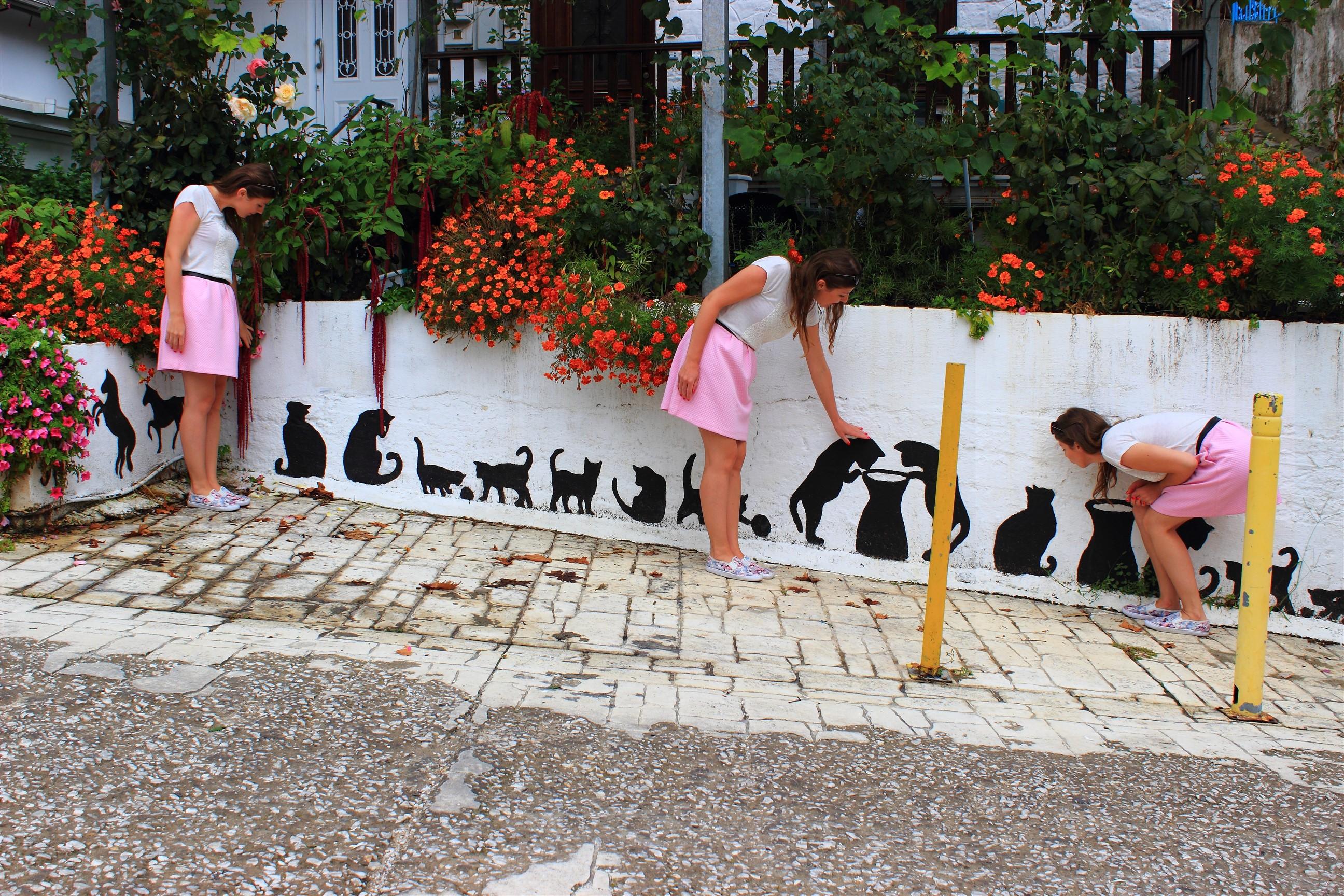 Nie tylko Grecy są zakręceni na punkcie kotów. Asia też!