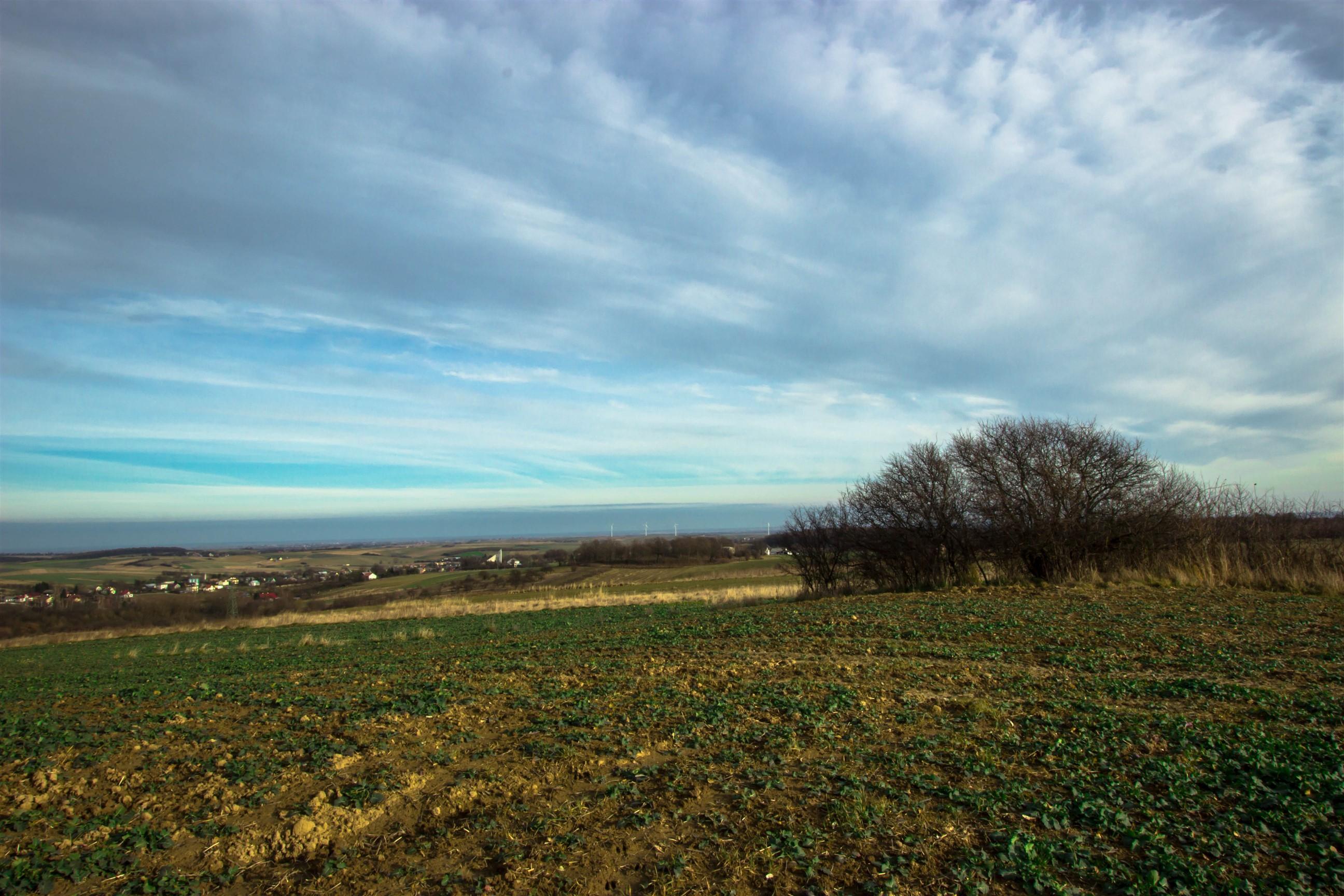 Leniwe widoki Pogórza Przemyskiego