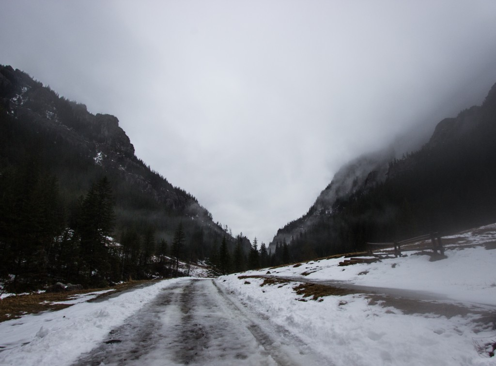 Zielony szlak - Dolina Kościeliska - w drodze do Kir.