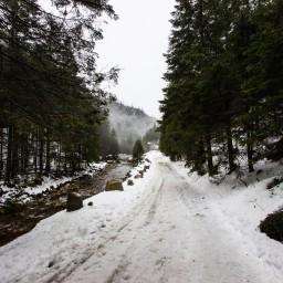 Dolina Chochołowska – Tatrzański Grześ
