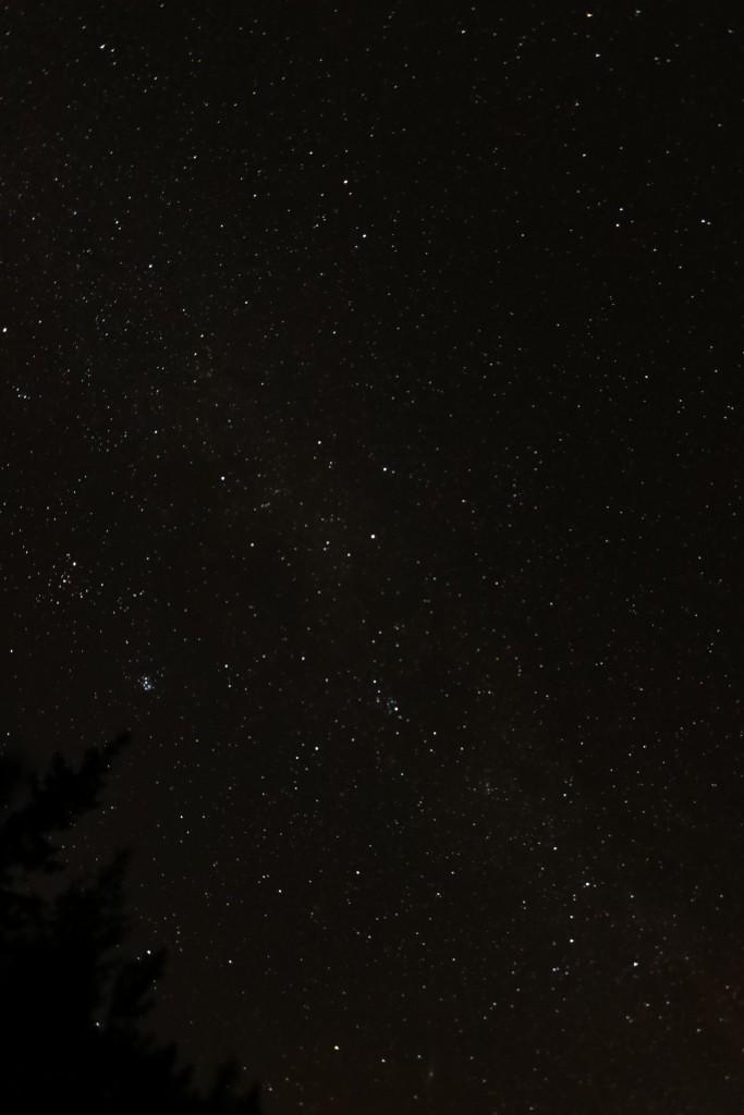 Gwiazdy widoczne z Grzesia