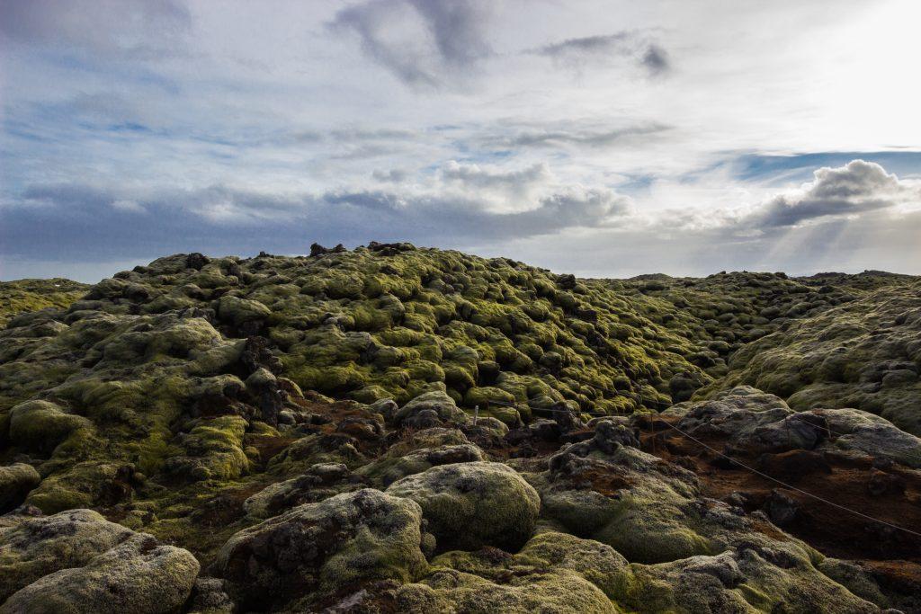 Pola lawowe na Islandii