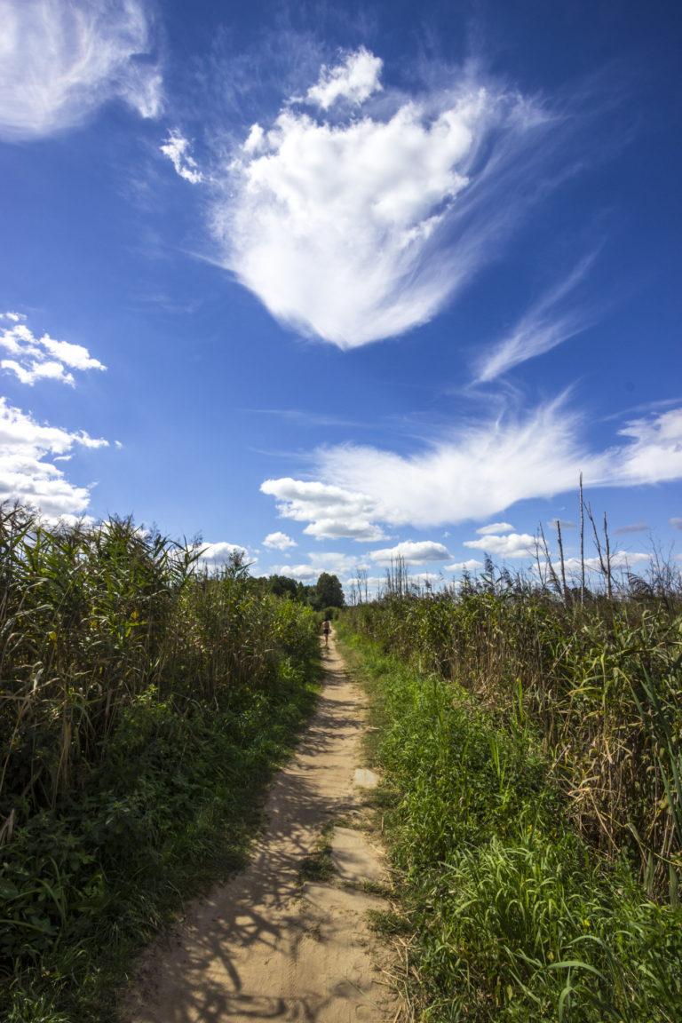 Ścieżka wokół jeziora Białego