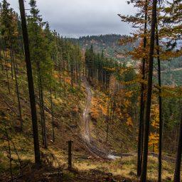 Beskid Żywiecki w jesienno-zimowych barwach