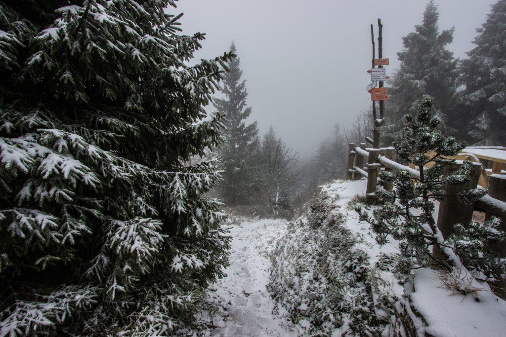 Widoki ze Schroniska PTTK na Wielkiej Raczy, zima w Beskidzie Żywieckim