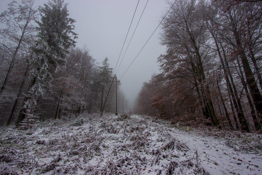 Czerwony szlak, zejście ze Schroniska PTTK na Wielkiej Raczy do Zwardonia