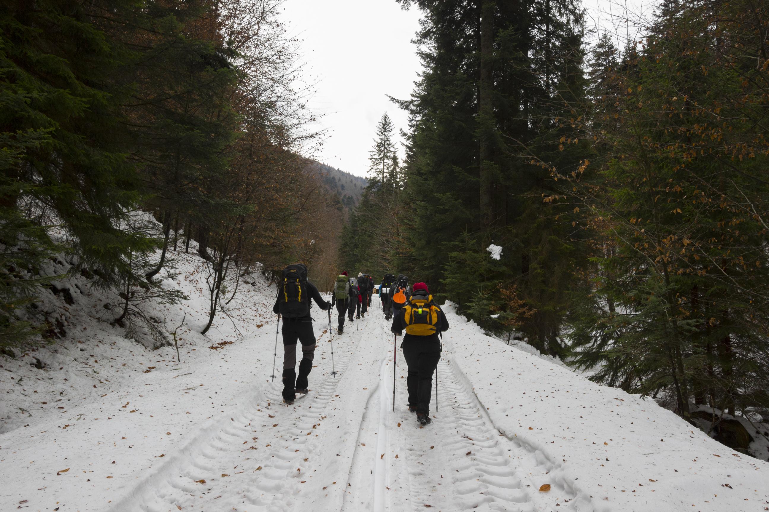 zimą w Goracach
