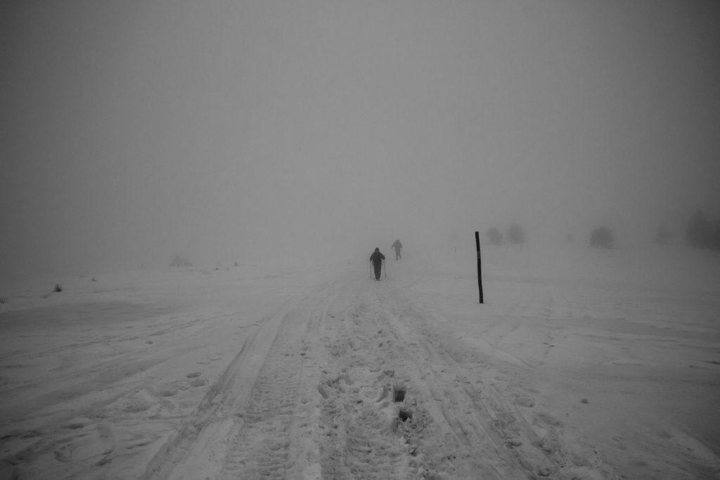 Czoło Turbacza. Wędrówka we mgle w Gorcach