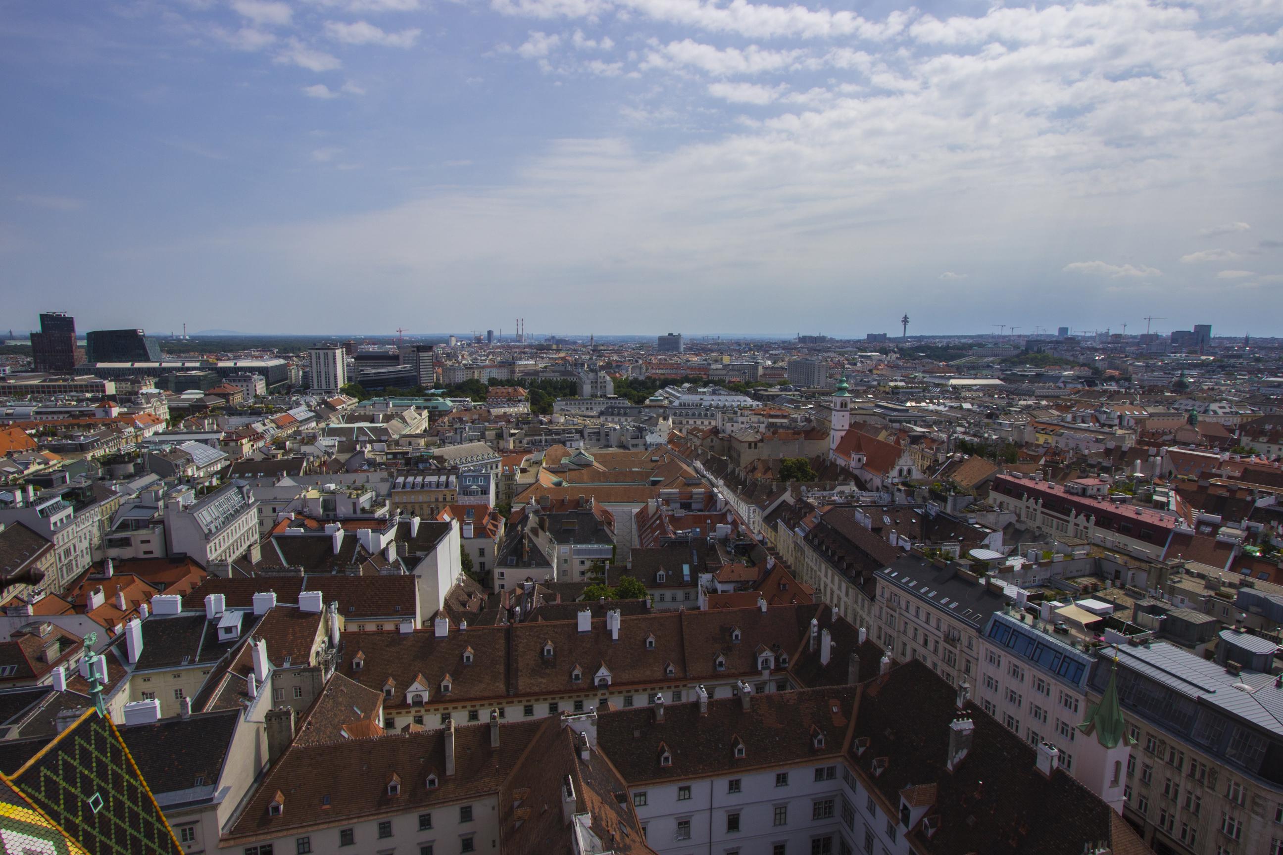 Widok na miasto z Katedry św. Szczepana