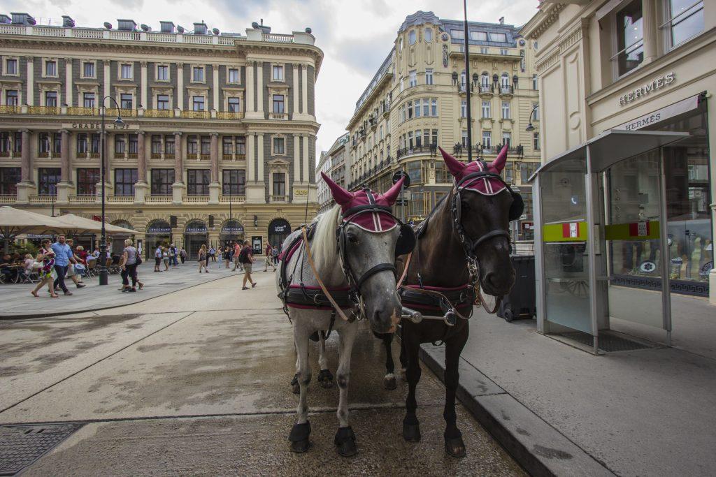 Plac św. Piotra, Wiedeń