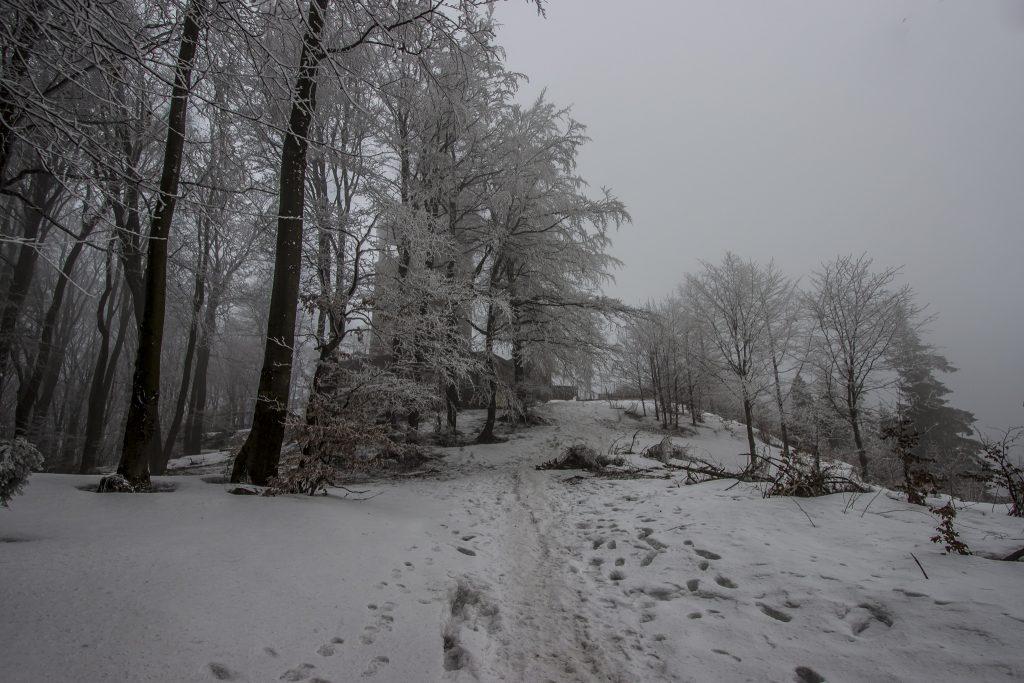 Luboń Wielki zaskoczył nas swoją śnieżną aurą (i oblodzeniem na podejściu) ;)