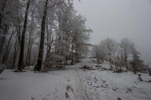 Luboń Wielki zaskoczył nas swoją śnieżną aurą (i lodem na podejściu) ;)