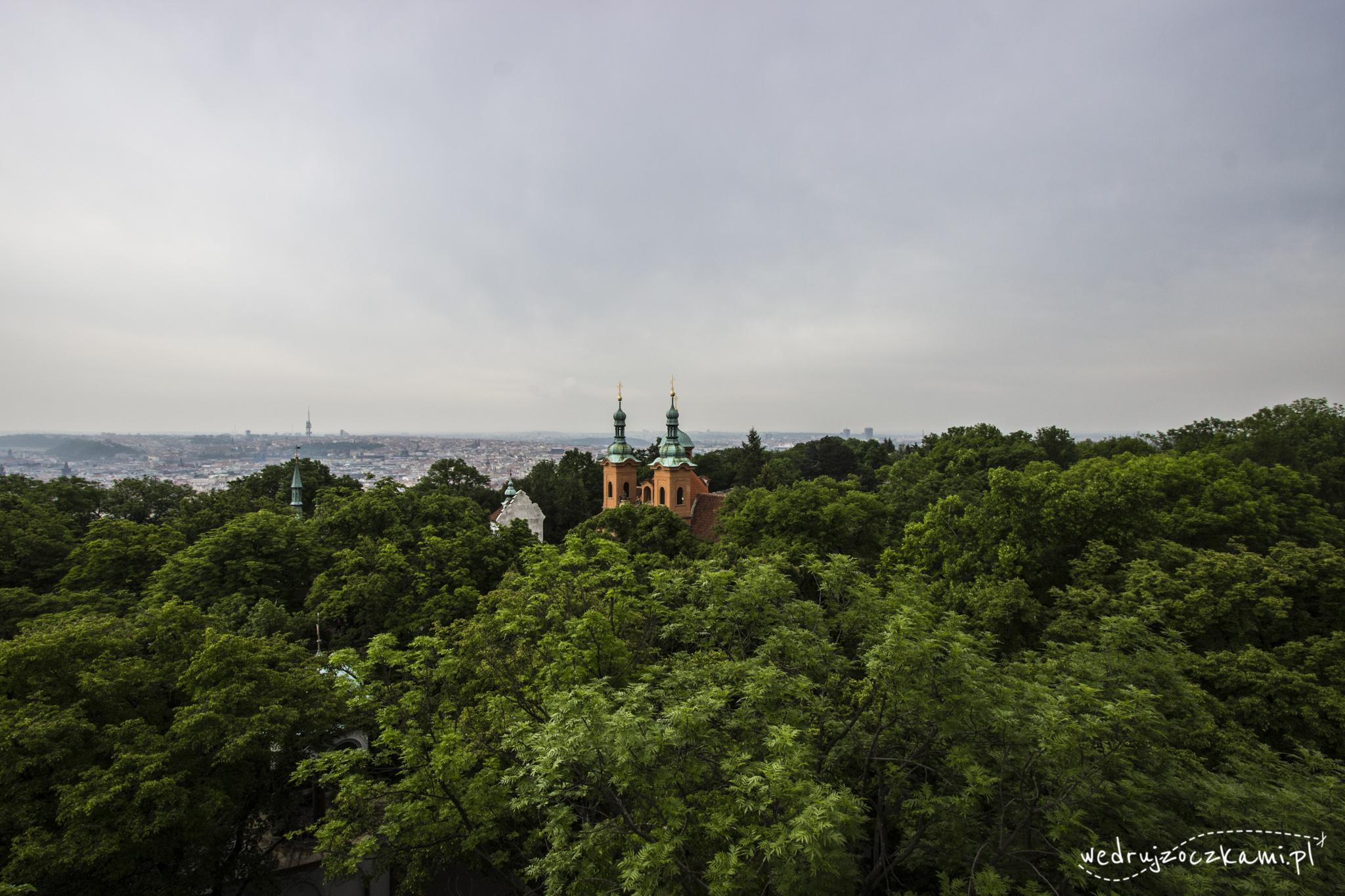 Pierwsze widoki z wieży widokowej