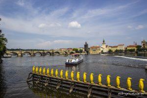 Widok na Most Karola (po lewej) oraz na Stare Miasto.
