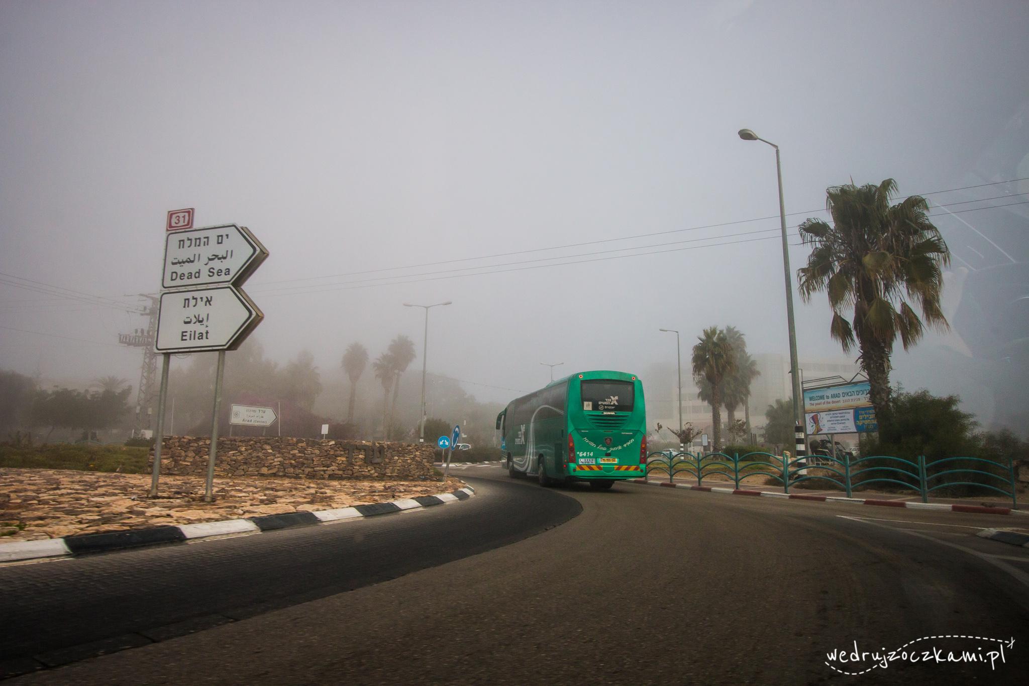 Arad we mgle, Izrael