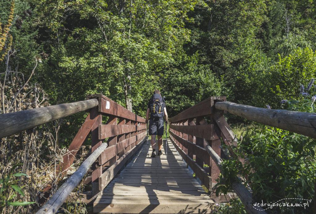Czerwony szlak w stronę Połoniny Caryńskiej, Bieszczadzki Park Narodowy