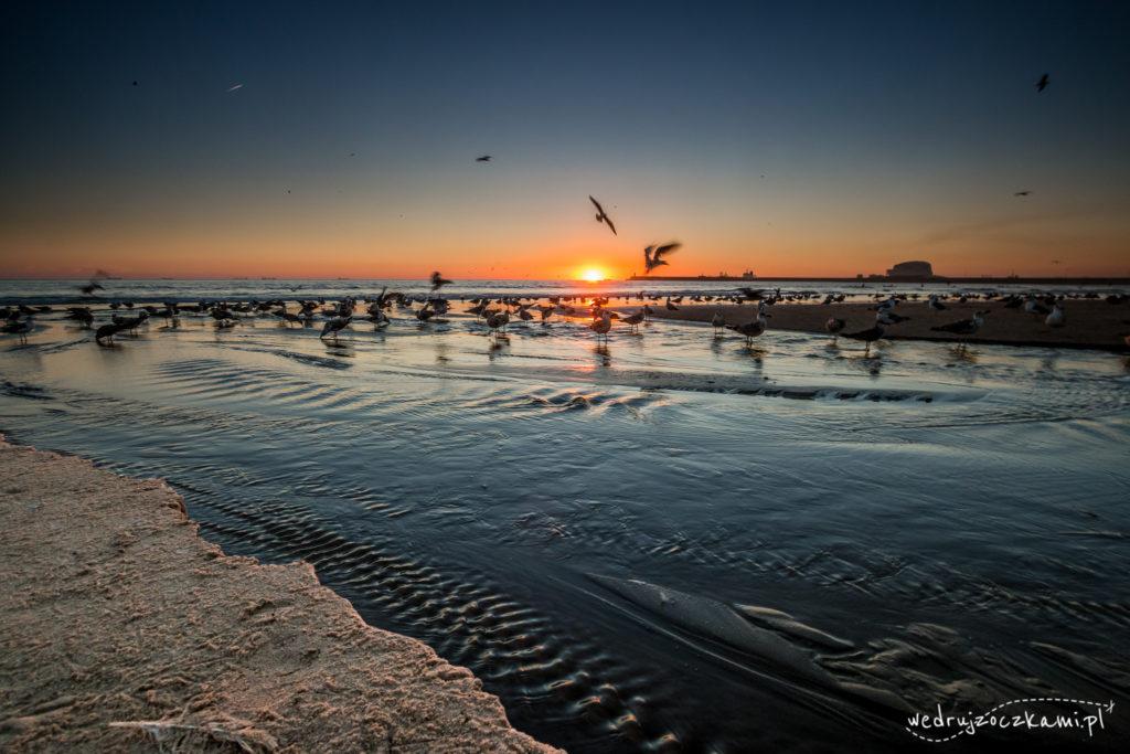 Plaża Mathosinhos