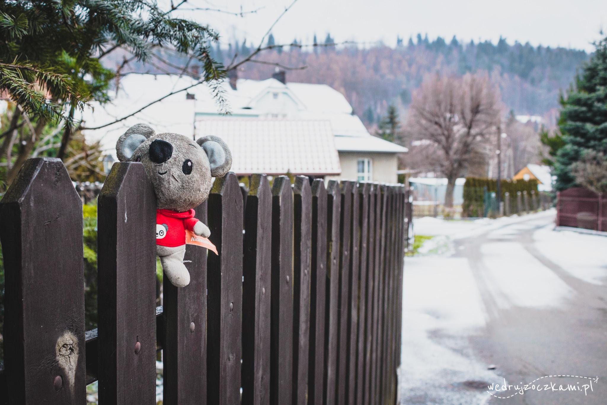Pluszowy miś w zimowej scenerii