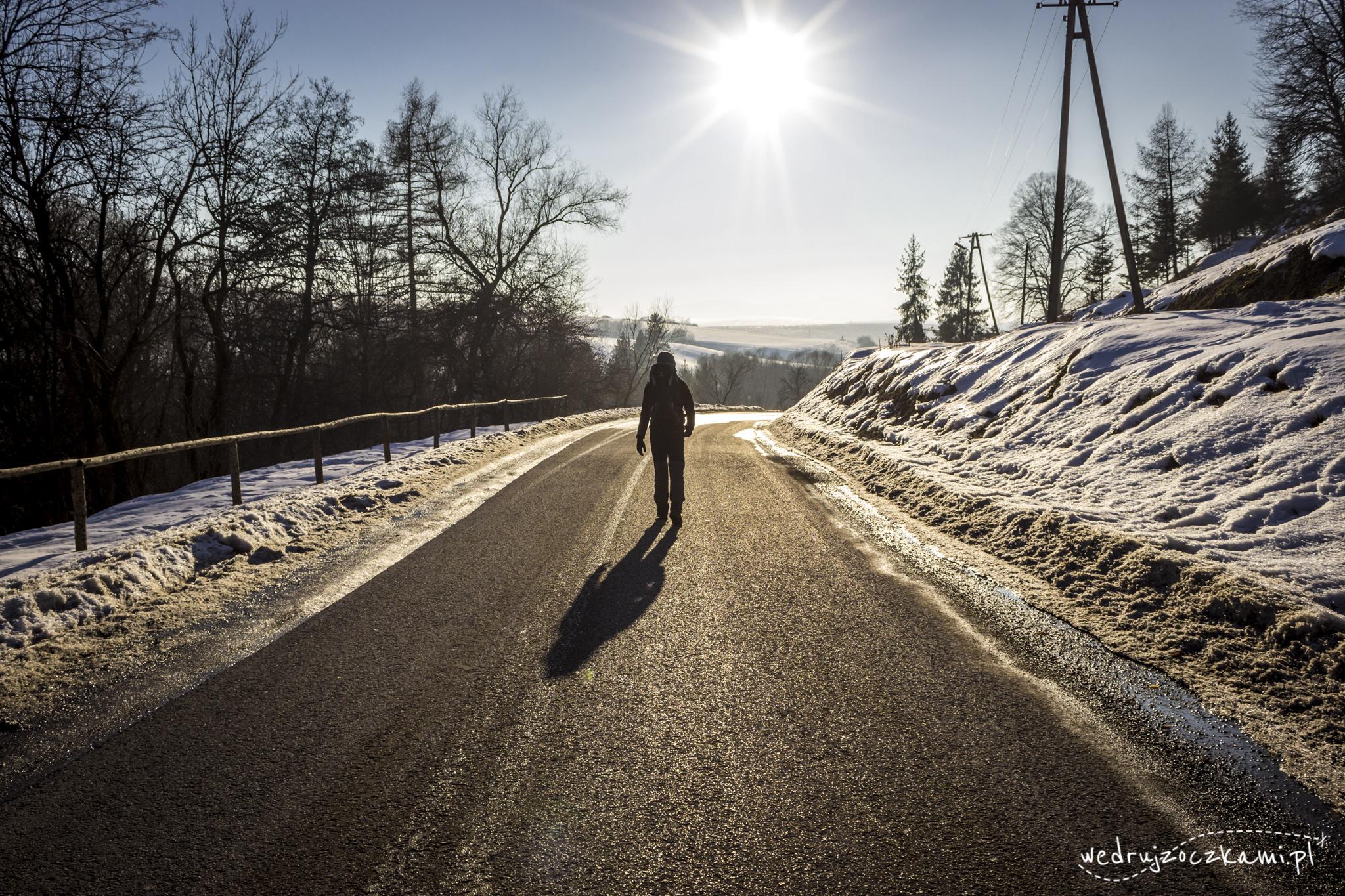 Oczko idący zimową drogą w stronę słońca
