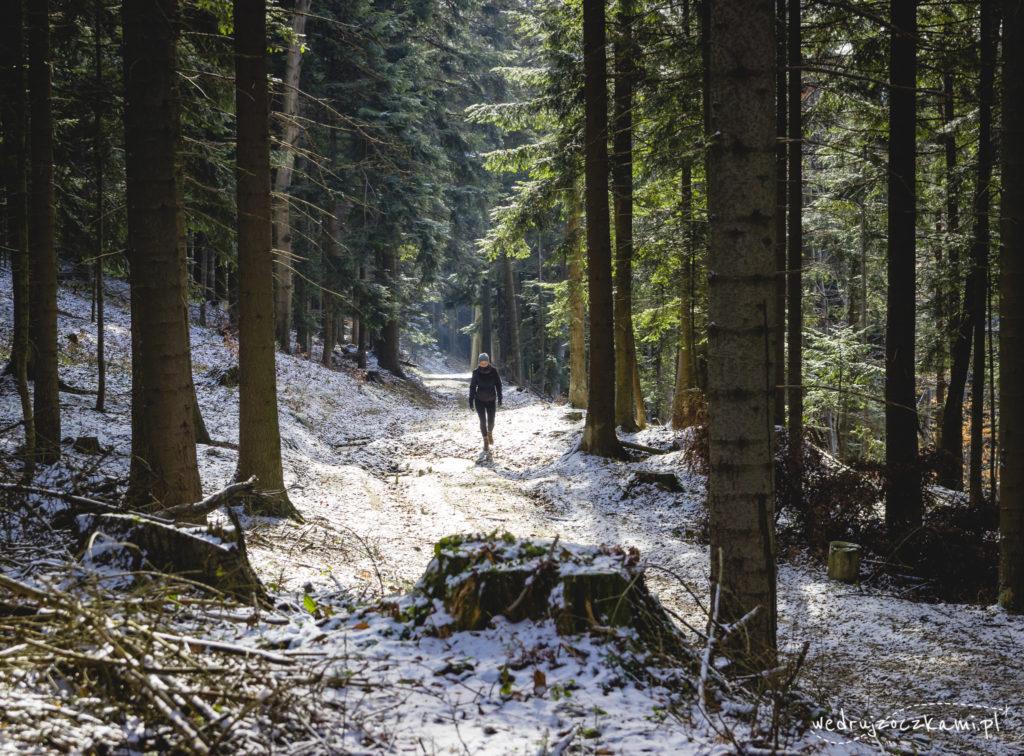 Kobieta idąca przez las