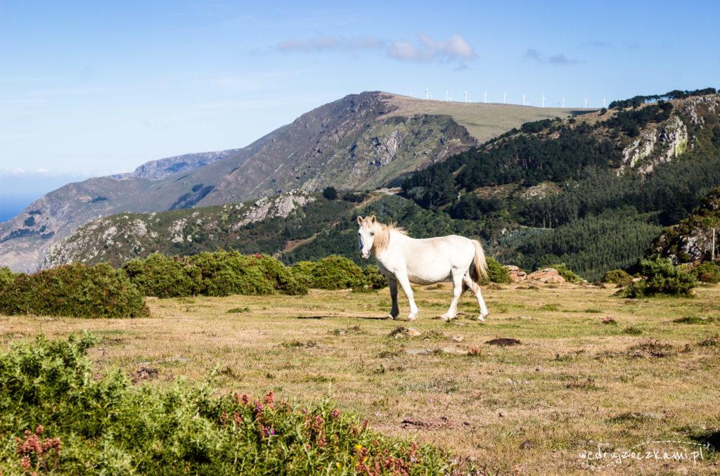 Mirador Chao do Monte, Hiszpania